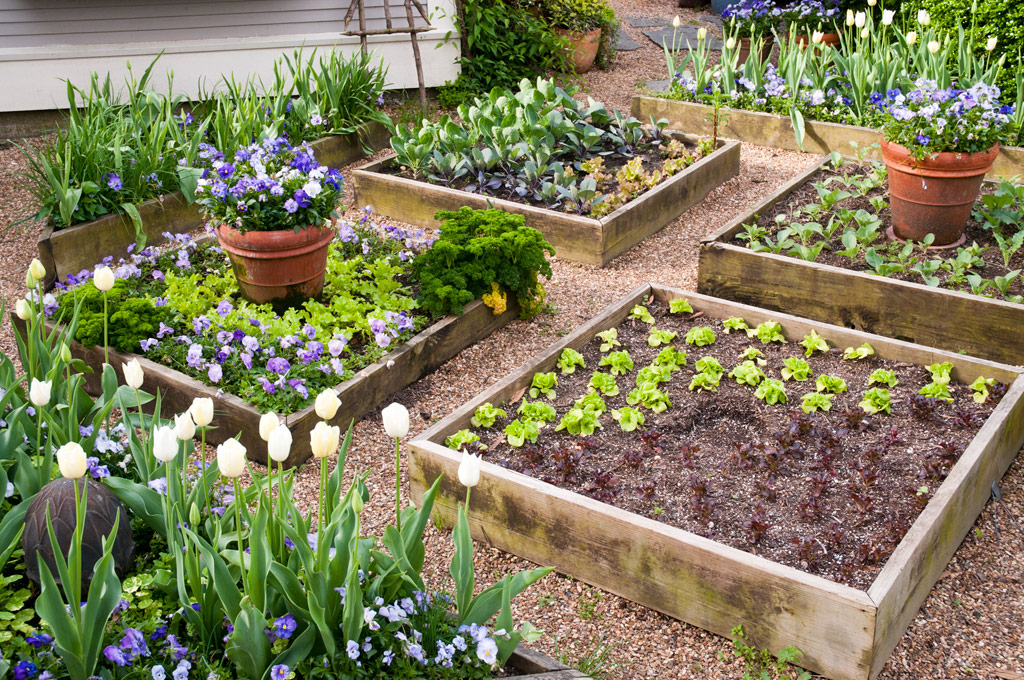 garden design with how to build the best raised garden beds with frontyard landscaping ideas from